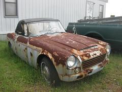 triumph tr250(0.0), triumph tr5(0.0), mg midget(0.0), sports car(0.0), automobile(1.0), vehicle(1.0), performance car(1.0), datsun roadster(1.0), antique car(1.0), classic car(1.0), vintage car(1.0), land vehicle(1.0), convertible(1.0),