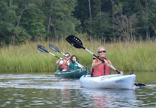 Explore the marshes and waters at York River