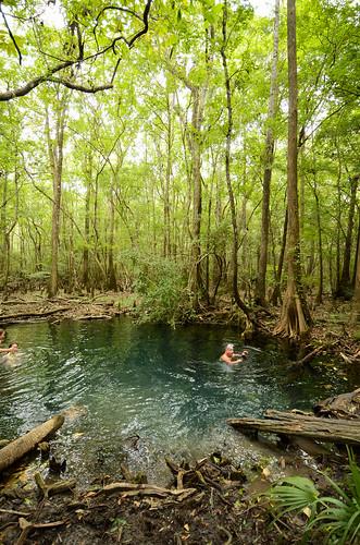 water spring woods florida springs swamp remote freshwater brunsonlandingspring