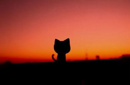 每当夕阳西沉的时候 我总是在这里盼望你