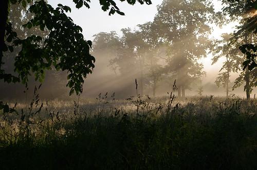 mist landscape evening estonia pentax eesti hommik udu k7 soomaa maastik viljandimaa soomaanationalpark soomaarahvuspark pentaxk7 tipuküla