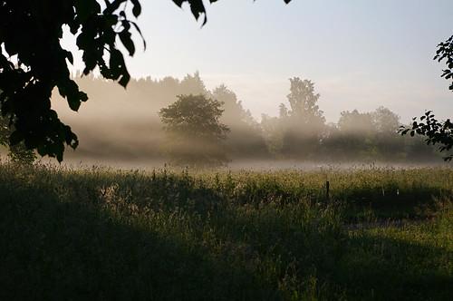 mist landscape evening estonia pentax eesti hommik udu k7 soomaa maastik heinamaa viljandimaa soomaanationalpark soomaarahvuspark pentaxk7 tipuküla