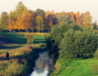 (290/365) Autumn park