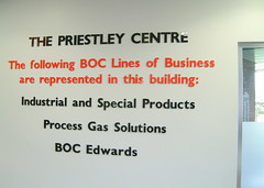 Internal Office wall lettering
