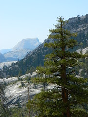 Other Side of Half Dome