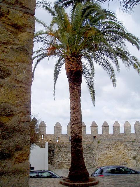 Vejer de la Frontera, Cádiz, Andalusia - Spain