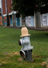 St. Theresa_Fire Hydrant