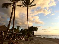 ハワイ島のレストラン・ビーチツリー