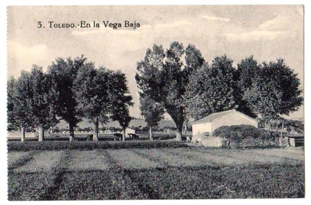 Vega Baja a comienzos del siglo XX