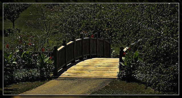 Toledo Botanical Gardens 3