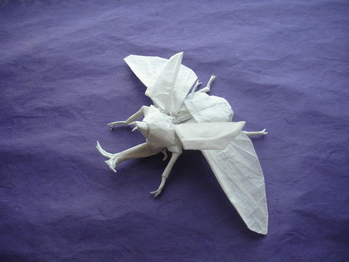 Origami, The Art of Designing and Manufacturing Masterpieces - photo#2