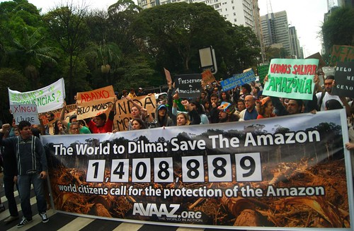 The World to Dilma: Save the Amazon