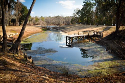 park water spring florida springs freshwater suwannee guarantospring