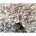 Moreno Pagliari, La rosa canina e la neve
