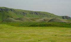 Pimpled landscape