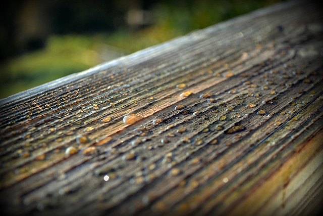 Drops on the Railing
