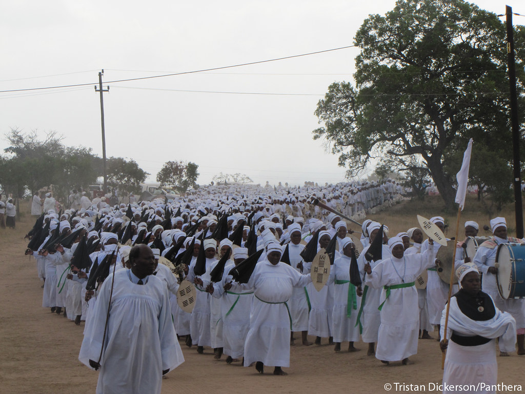 Procession at Shembe ceremony