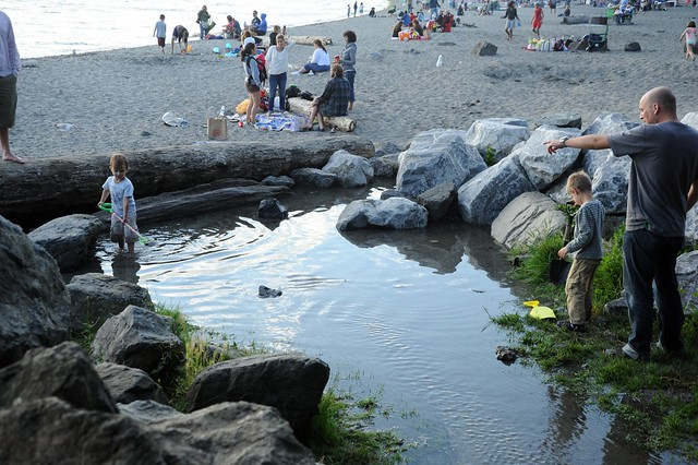 Daddy And The Kids Digging The Pond People Enjoying The Beach Golden Gardens Park Seattle
