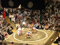 amateur wrestling(0.0), greco-roman wrestling(0.0), grappling(0.0), wrestler(0.0), sumo(1.0), individual sports(1.0), contact sport(1.0), sports(1.0), combat sport(1.0), wrestling(1.0),