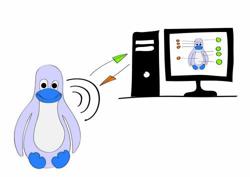 Penguin setup
