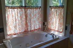 Master Bathroom Window Treatment