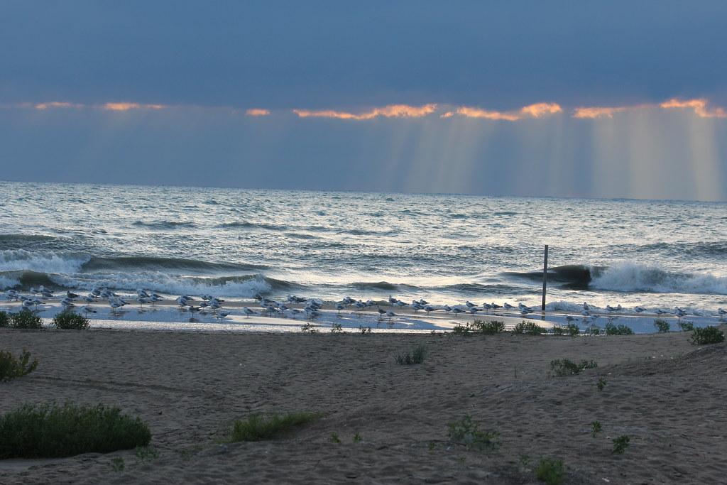 Illinois Beach State Park South Unit