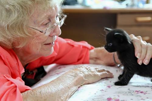 Old Women and Kitten