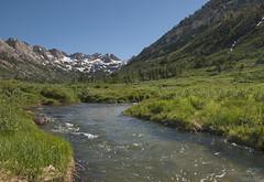 Lamoille Creek