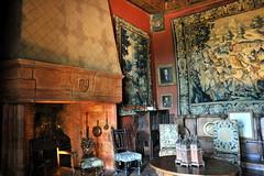 Salon de Luynes - Appartements de Jean Mouliérat - Château de Castelnau-Bretenoux - Lot