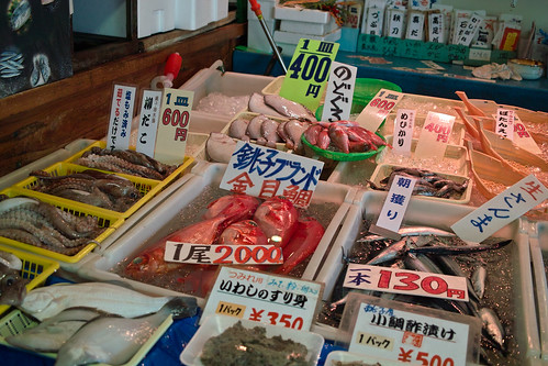Fishes! (Choshi, Chiba, Japan)