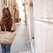 Lusi y su cesta ~  Explore by maría_cantonero