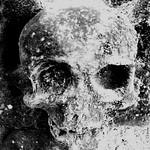 eSkull #006