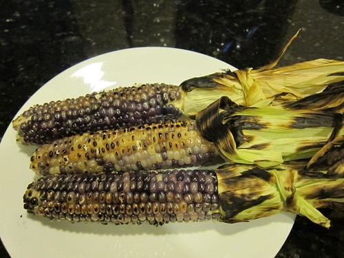 blue corn IMG_7746