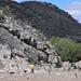 Herding goats - Pastoreando las cabras; Los Reyes Metzontla (al sur de Zapotitlán), Puebla, Mexico por Lon&Queta