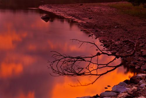 sunset lake reflection nature water georgia rocks branch twig lagrange troupcounty westpointlake thesussman sonyalphadslra200 project36612011