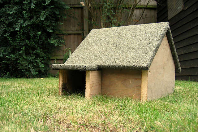 Build Your Own Hedgehog House  Design Your Own Home   dd d  z jpg