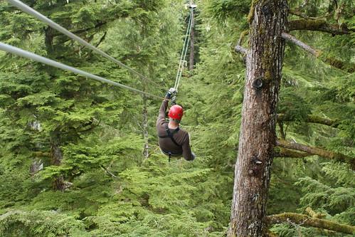 Forest Canopy Zipline