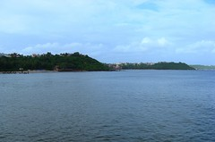 Backwaters of Goa