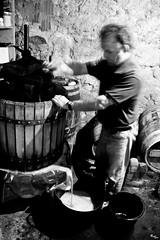 Correndo o viño