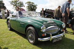 aston martin db2(0.0), ac ace(0.0), automobile(1.0), vehicle(1.0), austin-healey 100(1.0), austin-healey 3000(1.0), antique car(1.0), classic car(1.0), vintage car(1.0), land vehicle(1.0), coupã©(1.0), convertible(1.0), sports car(1.0),