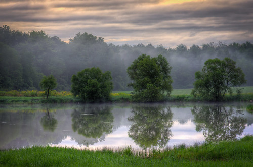 morning trees green water grass clouds sunrise pond sale mexicony oswegocounty featuredonadidapcom