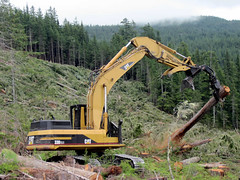logging, vehicle, tree, demolition, construction equipment,