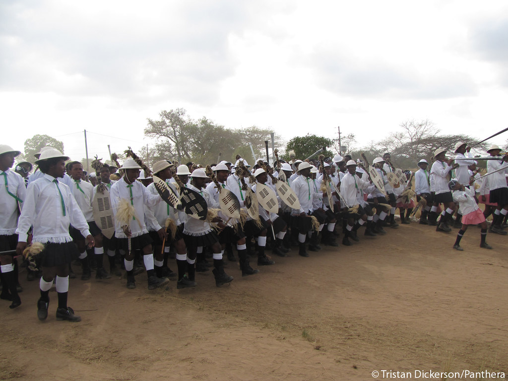 Musical procession at Shembe ceremony