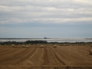 Tranquil beauty: Lindisfarne beyond a harvested cornfield
