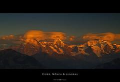 Eiger, M?nch & Jungfrau