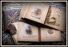 The Falling Apart Photo Album.