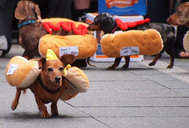 Running Of The Wieners (11)
