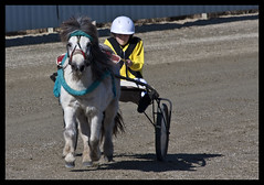 Redcliffe Mini Trots 13th August 2011