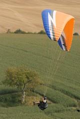 Paraglider #6