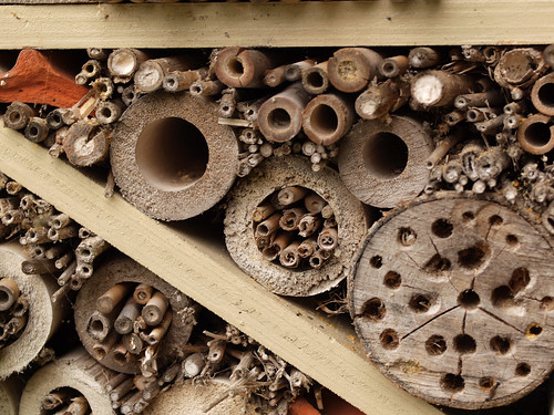 Insect hotel - close-up
